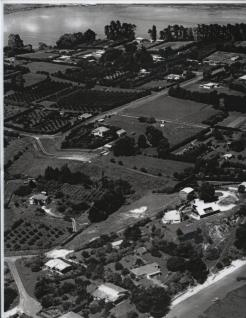 Kings Ave Smiths Road Cnr in centreStrange Grove at Bottom. MatuaIwi Pa site bottom right