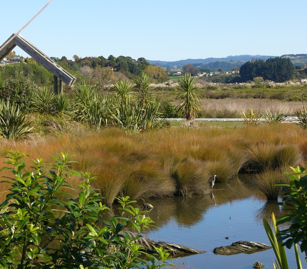 Saltmarsh and stormwater ponds